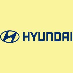 Hyundai Motor Company complaints