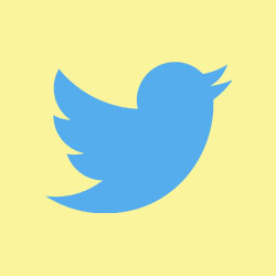 Twitter complaints email & Phone number
