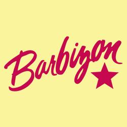 Barbizon complaints