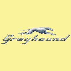Greyhound complaints